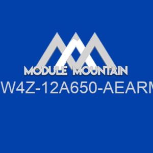 Control Module - Ford (4W4Z-12A650-AEARM)